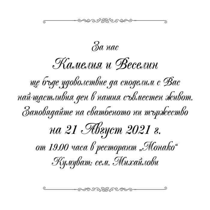 Шрифтове 13